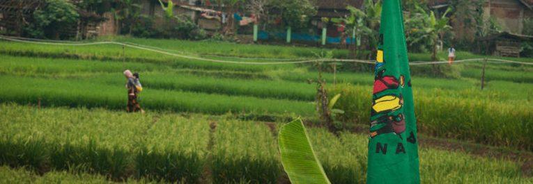 La Région Arabe et Afrique du Nord de LVC appelle à la réforme agraire