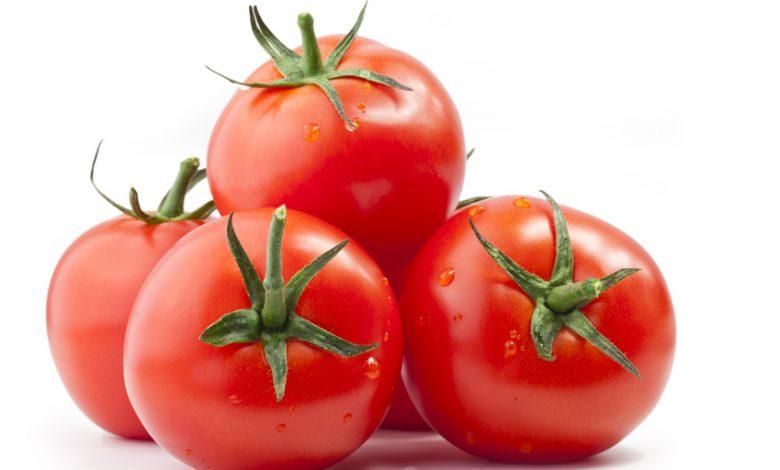 صورة قصة الطماطم…