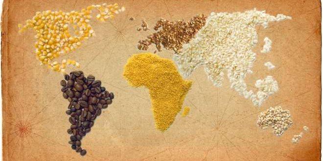 السيادة الغذائية ندوة أكادير