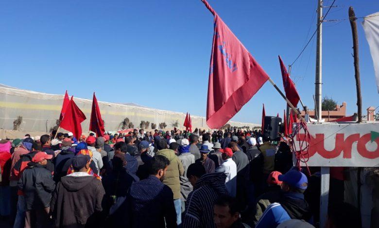 صورة العاملات والعمال الزراعيون بمنطقة سوس ماسة يناضلون من أجل إرجاع النقابيين المطرودين من شركة ديروك الفلاحية ومن أجل الدفاع عن الحريات النقابية
