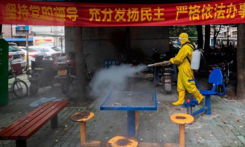 صورة من أجل فهم للأوبئة بمنظور معاد للرأسمالية